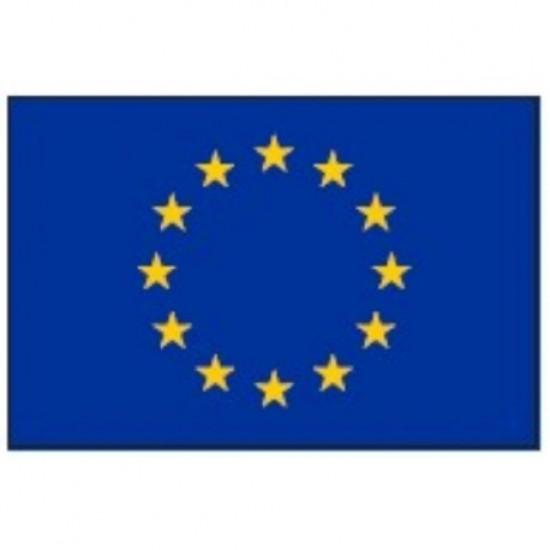 Banderas - BANDERA EUROPA         30x 20cm